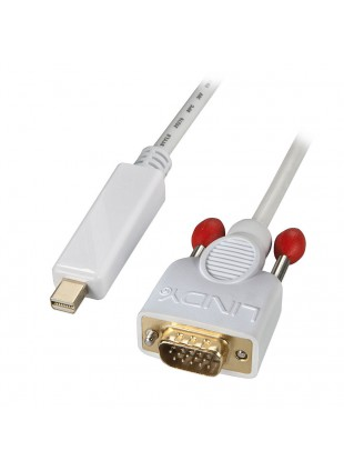 Cavo Mini DisplayPort / VGA 2m